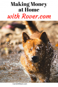 Making Money at Home with Rover.com